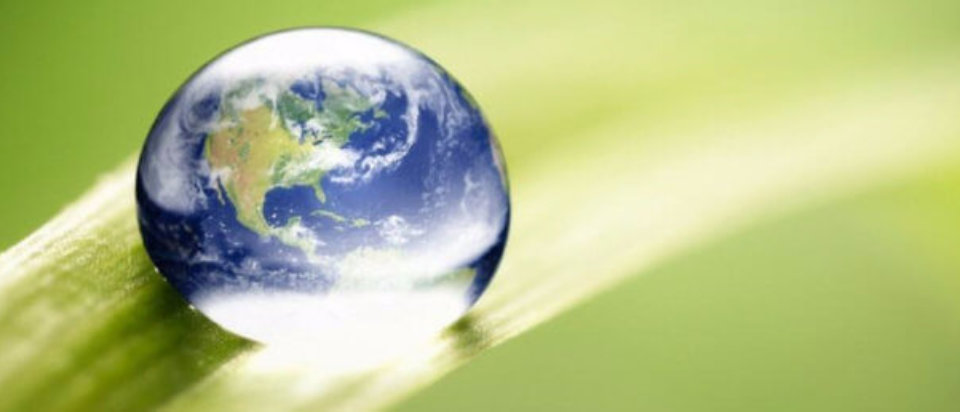QUAMSI sas Giornata mondiale ambiente