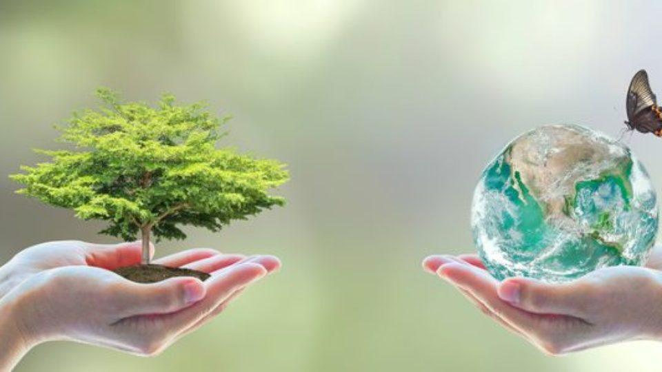 valutazione-impatto-ambientale-studio-di-impatto-ambientale-860x300_c