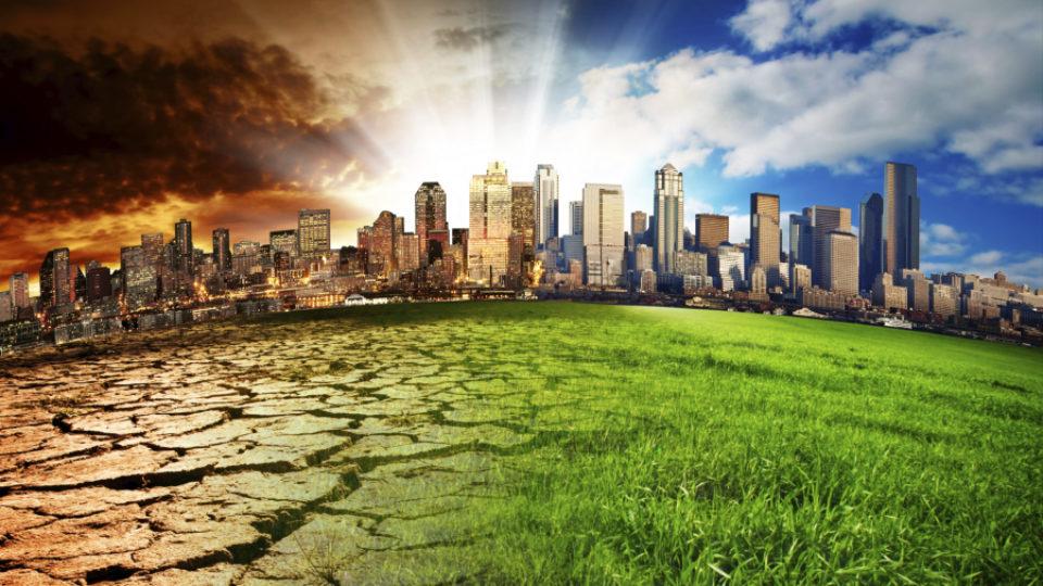 come-contrastare-cambiamento-climatico-cause-conseguenze-global-warming-rischi-biodiversita-animali-estinzione-1