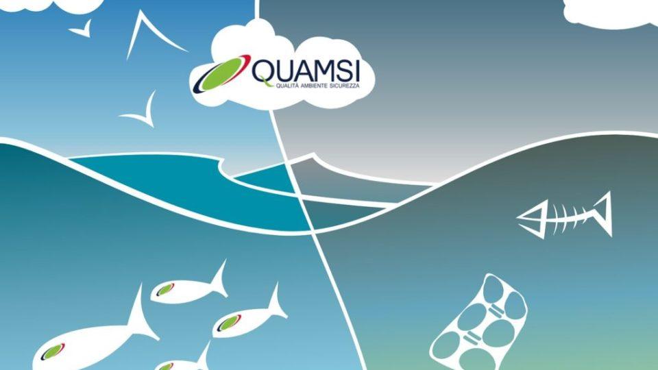 Oceano plastica Quamsi sas