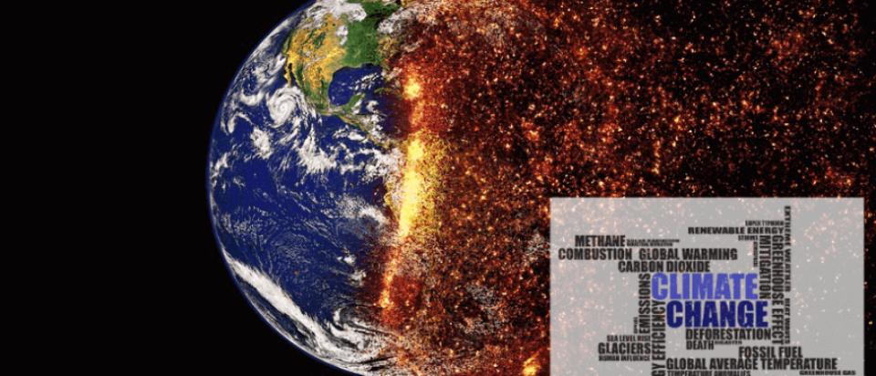 QUAMSI-Cambiamenti climatici 2019